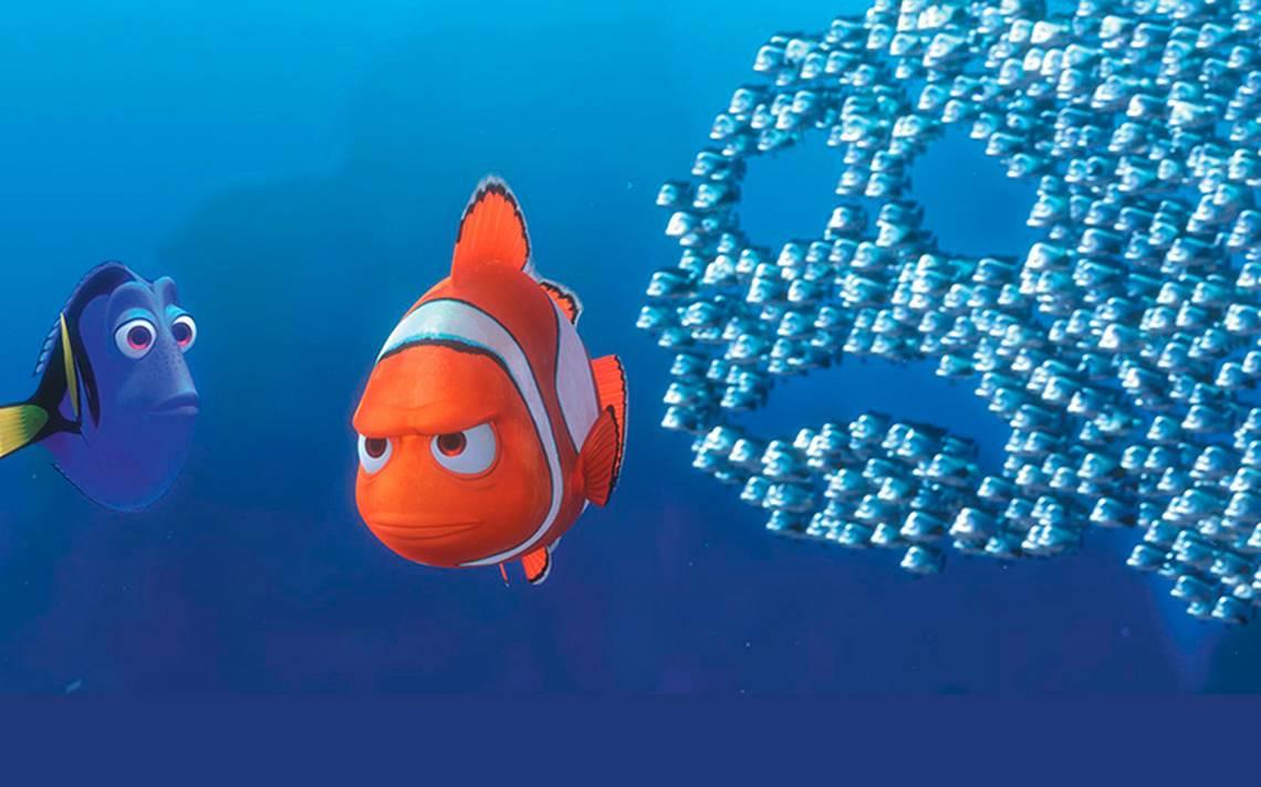 Miedosos, curiosos o valientes: descubren que los peces tienen personalidad