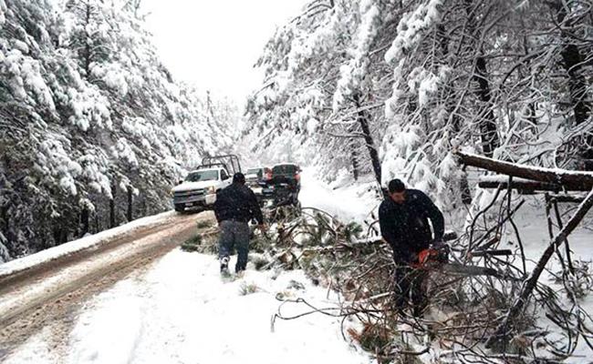 Declara Segob emergencia en 19 municipios por nevadas