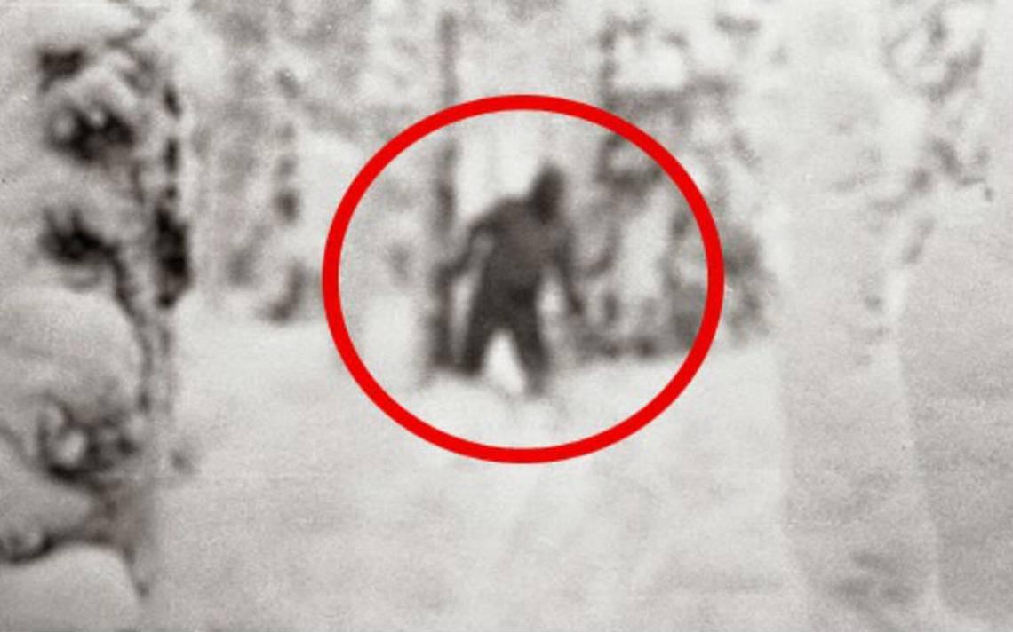 Adiós a la leyenda. Resuelven misterio del abominable hombre de las nieves
