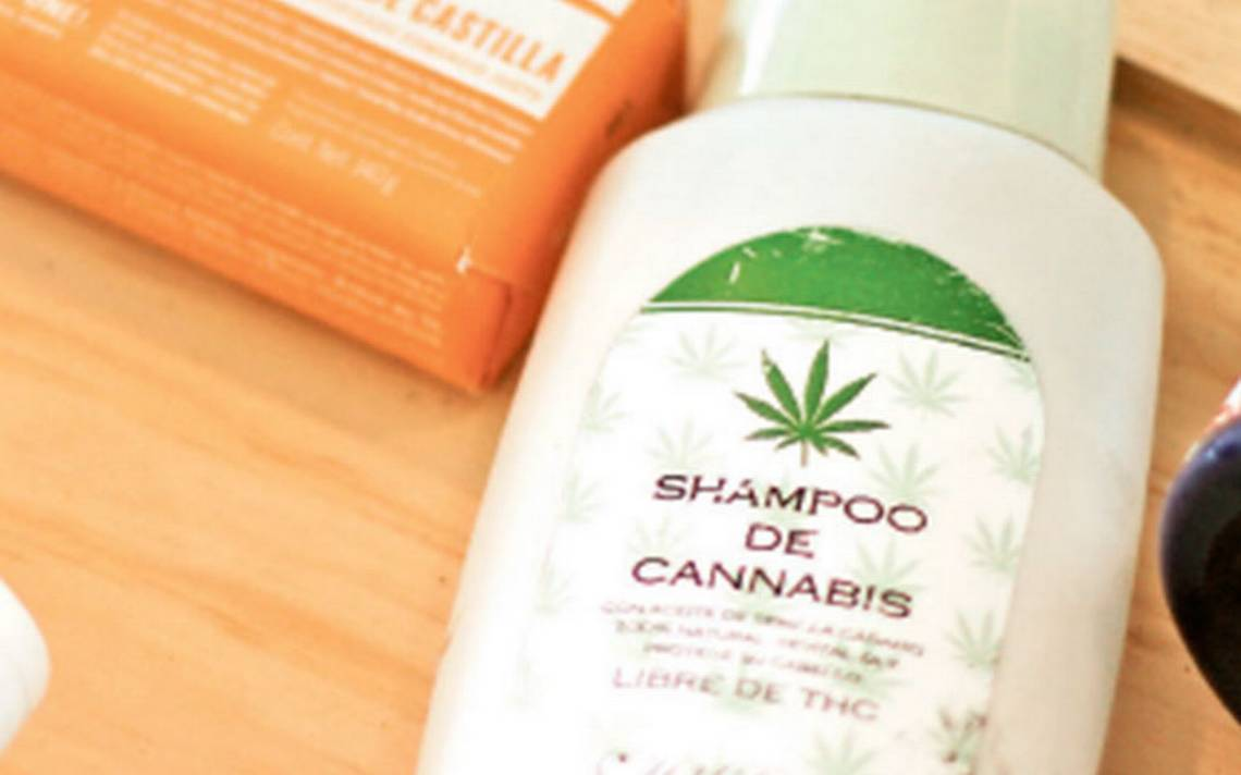 Cofepris obstaculiza el uso del cannabis, denuncia MUCD