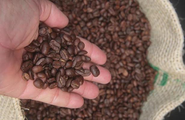 Cierra café nazi por falta de clientes