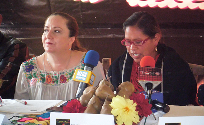 Anuncian muestra de  la pera, en Tarecuato