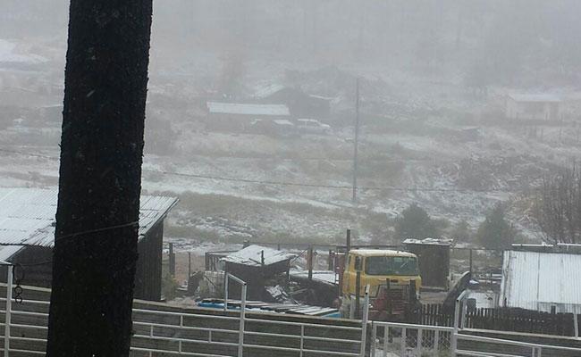 Prevén nevadas en el norte del país por tormenta invernal