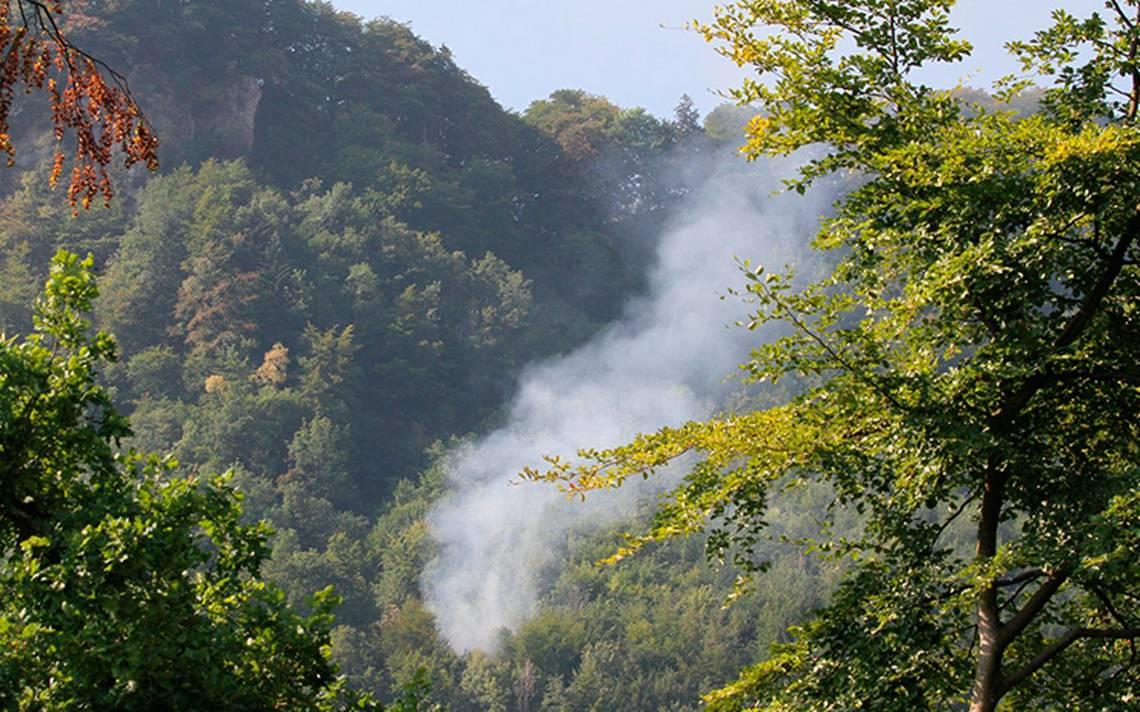 Se accidenta avión pequeño en bosque de Suiza; hay varios muertos