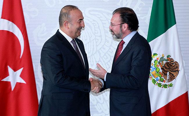 México, abierto a lazos de amistad y comerciales con países amigos: Videgaray