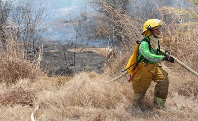 Continúa activo operativo contra incendio en Villa Corzo