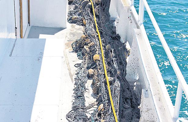 Retiran redes fantasma para proteger a la vaquita marina