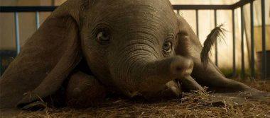 Disney revela nuevo póster internacional de Dumbo