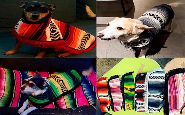 Fabrican artesanos tlaxcaltecas jorongos para mascotas