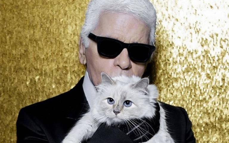 Ella es Choupette, la gatita de Karl Lagerfeld y heredera de su fortuna
