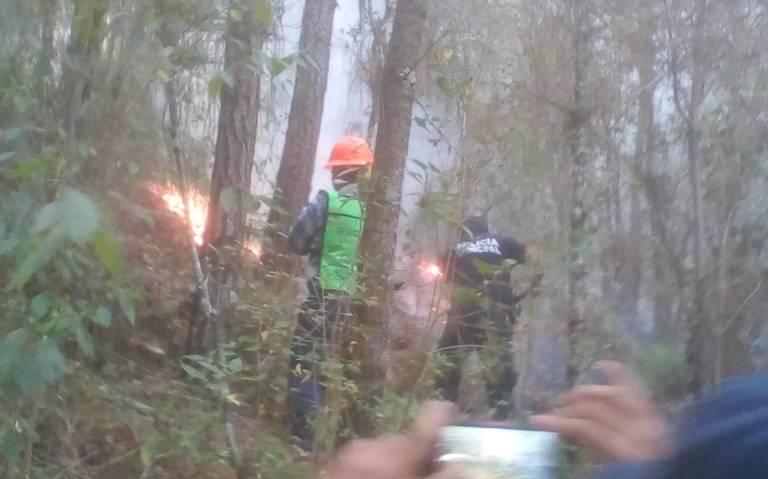 Muere brigadista que combatía incendio forestal en Veracruz