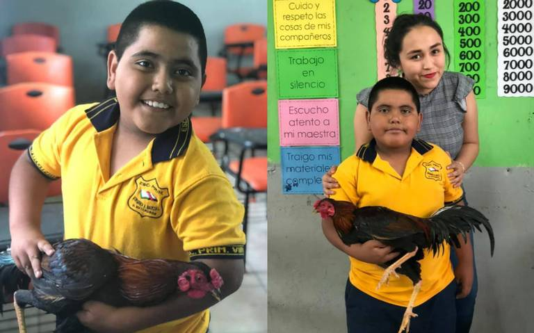 Este niño regala un gallo a su maestra y se vuelve viral
