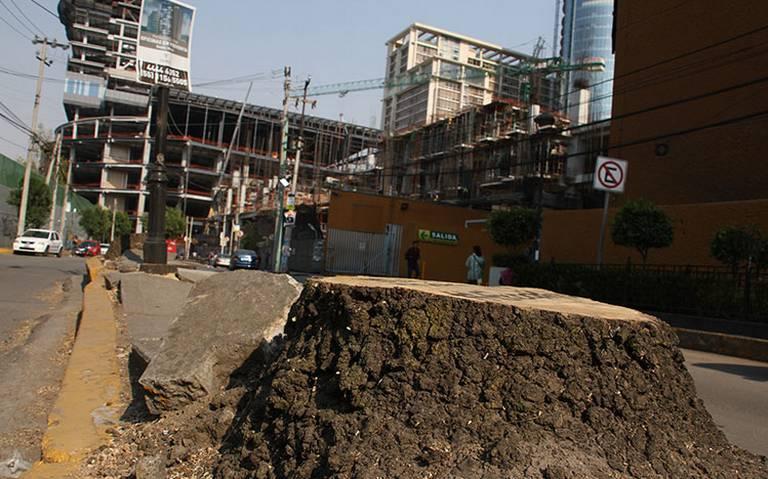 Mítikah pagará más de 25 mdp de multa por talar árboles