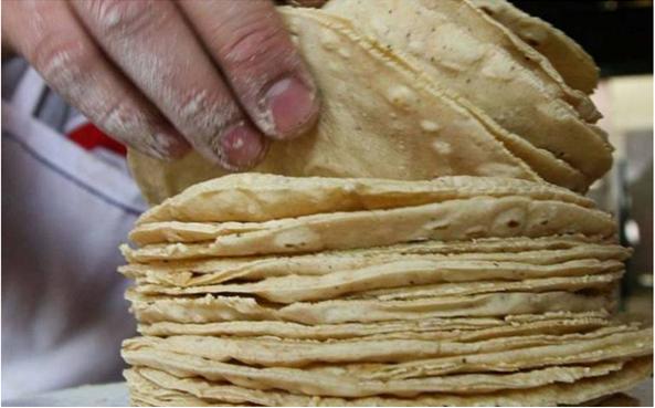 Sube la tortilla y el pan, pero ¿cumplen con los niveles de nutrientes?