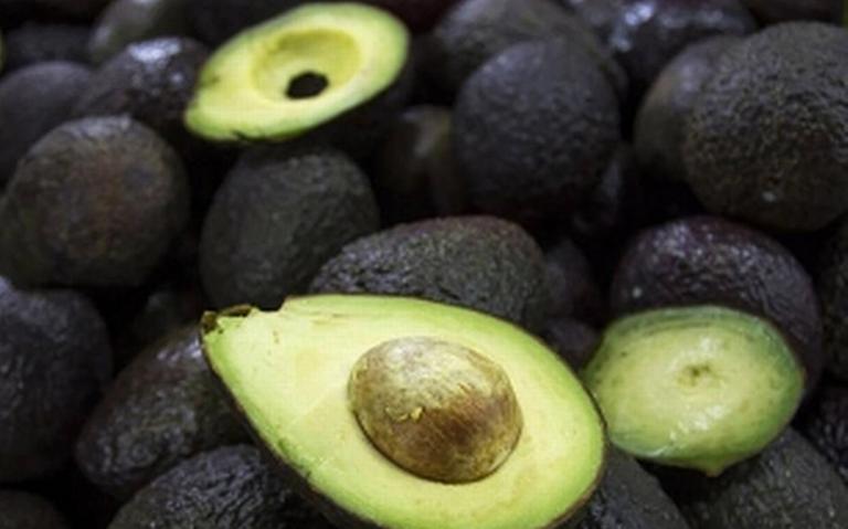 Rebanando el mito; el aguacate ¿es fruta o verdura?