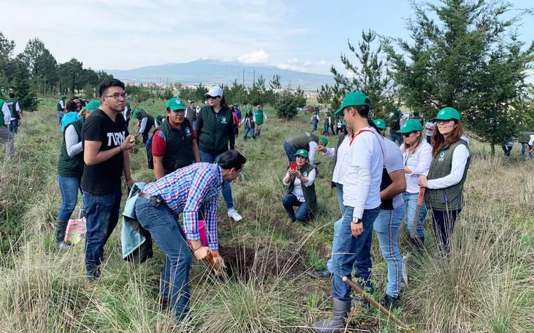 Entre exigencias, reforestan cuatro municipios del Edomex