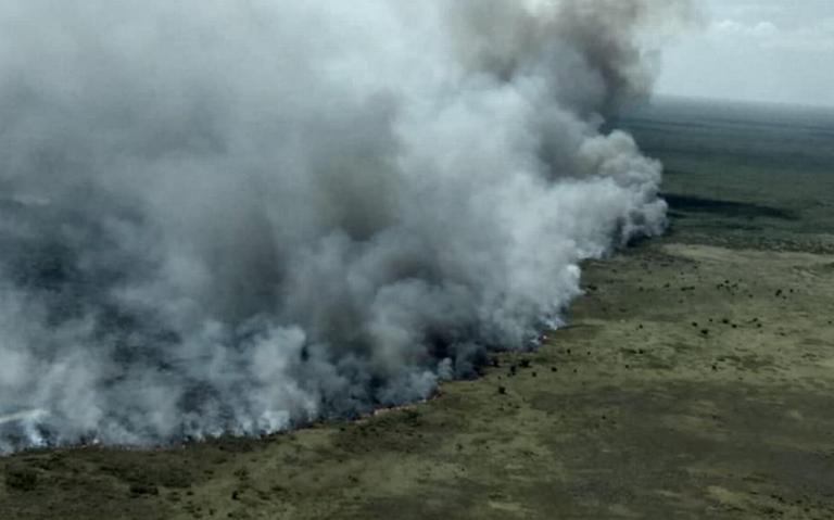 Fuerte incendio consume reserva ecológica Sian Ka'an, en Quintana Roo