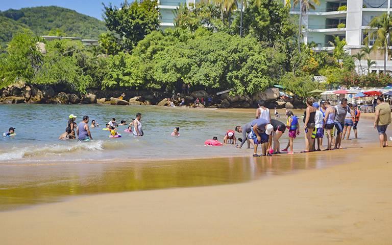 Cofepris tacha playas de Acapulco por rebasar límite de bacterias fecales