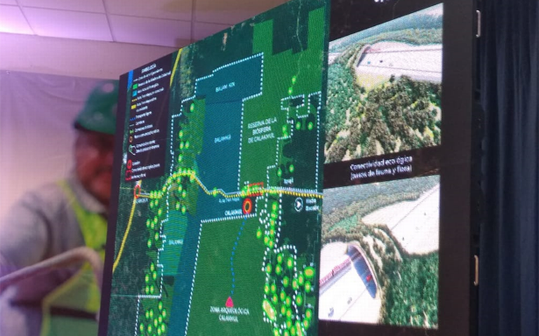Rescate arqueológico en ruta del Tren Maya