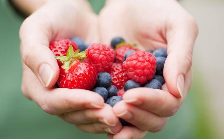Berries, tercer producto agrícola generador de divisas en México