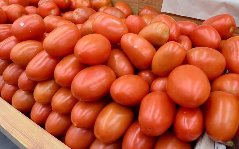 EU pide imposibles, acusan los tomateros