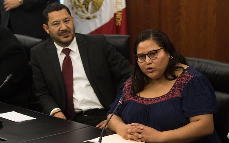 Aviones para uso personal, una prueba más del sistema de privilegios: Citlalli Hernández