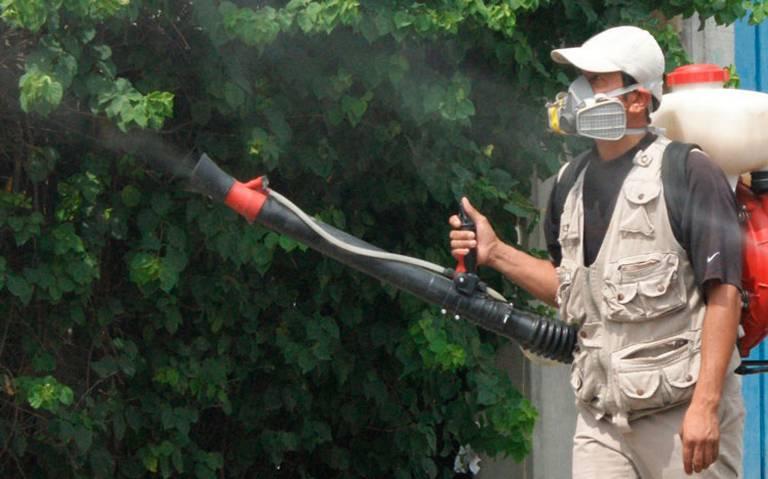Alarma en Veracruz por dengue