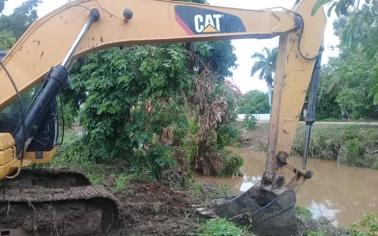 Pese a oposición, reinicia tala de mangle en arroyo Jabalines de Mazatlán