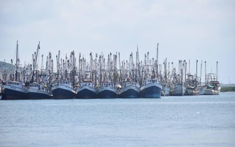 Definen pescadores del sur de Sinaloa logística para iniciar las capturas de camarón