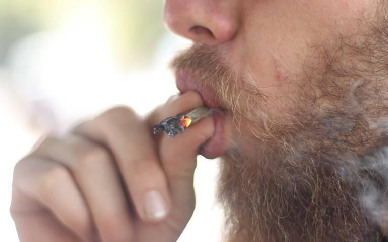 AMLO analiza abrir debate sobre legalización de la marihuana