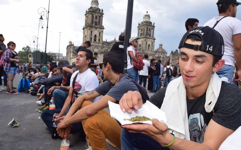 Corte valida derecho al uso medicinal de marihuana en la CDMX