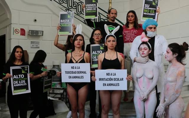 Protestan en Congreso de CDMX contra maltrato animal