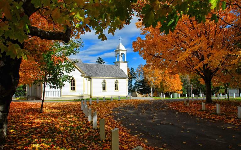 Destinos: Un otoño bajo el sol dorado