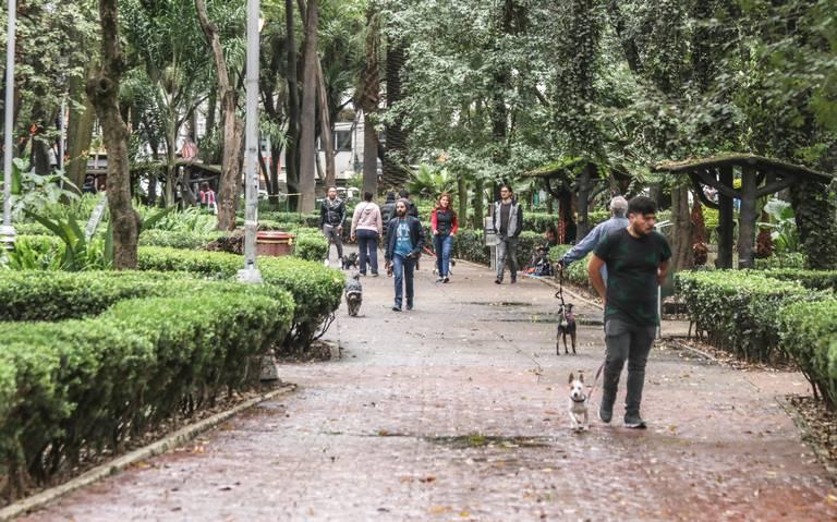 Sospechan de asesino serial suelto en corredor Hipódromo Condesa-Roma