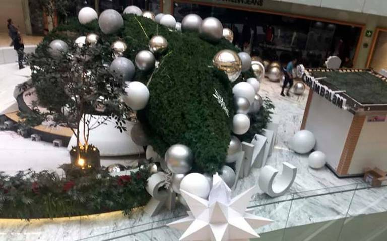 Cae enorme árbol de Navidad en Plaza Manacar; hay un herido