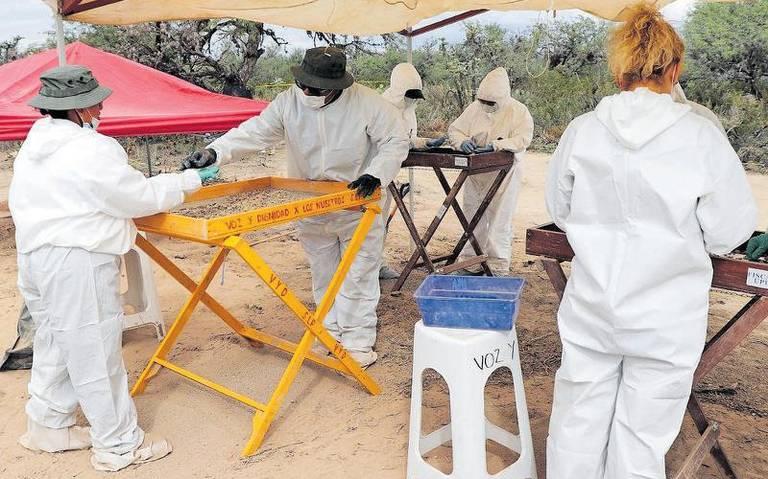 Hallan 12 cuerpos en fosa clandestina en Ejido Matanzas