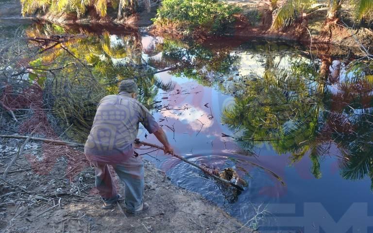 Tragedia ecológica en costas de Paraíso por derrame de combustible