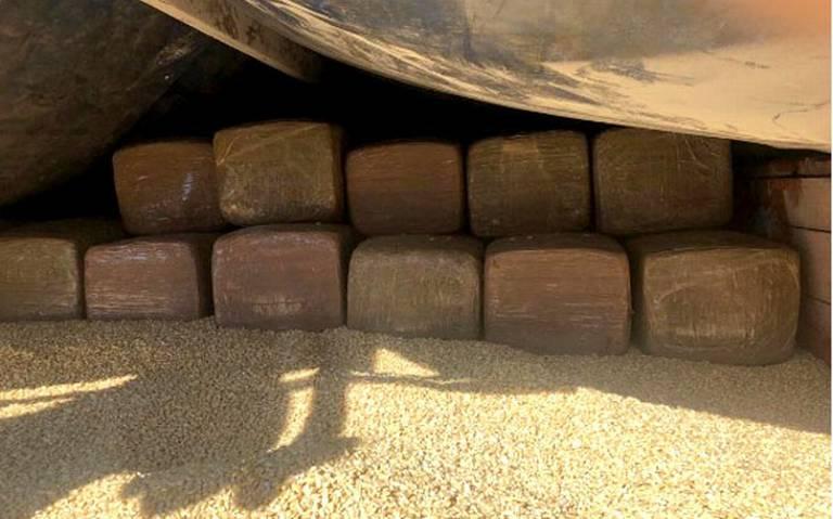 Halla Guardia Nacional, una tonelada de marihuana oculta entre maíz en Coahuila
