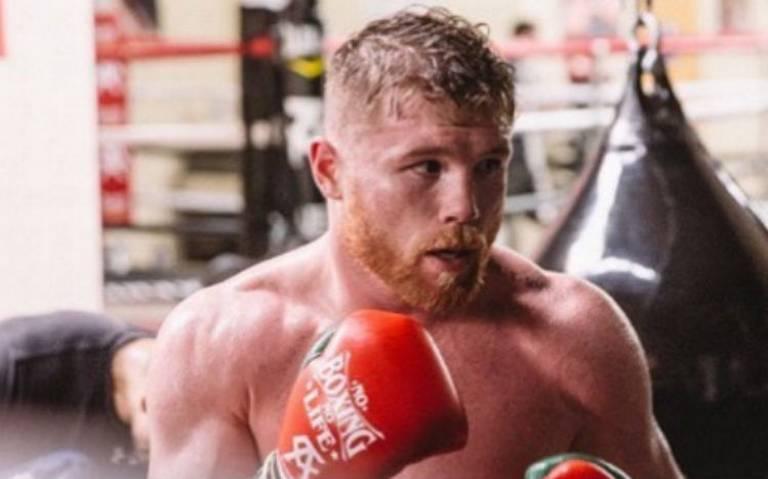 Boxeo mexicano cierra 2019 con 8 campeones mundiales