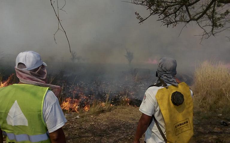 Dañaron incendios más de 30 mil hectáreas