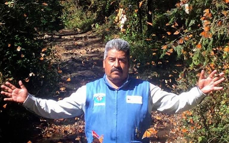 Continúa búsqueda de defensor de mariposa monarca en Michoacán