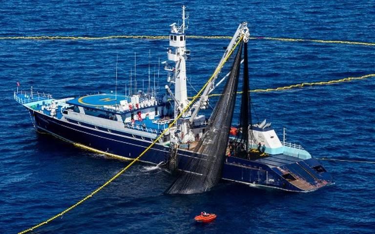 Zarpan 37 barcos a la pesca de atún en el pacífico mexicano
