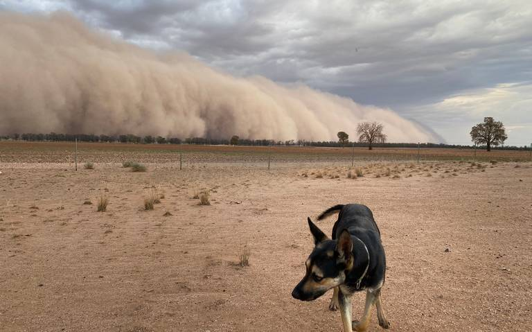 Tras incendios, Australia se ve inmersa entre tormentas de polvo y granizo