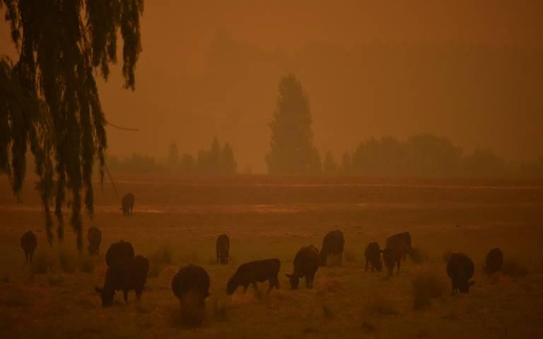 Vientos huracanados generan megaincendio en Australia