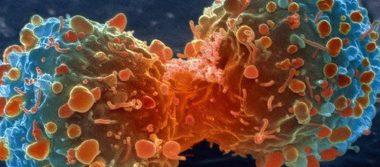 Descubren cómo se expande el cáncer en el cuerpo; abren vía a nuevo tratamiento