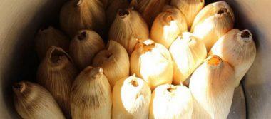 ¡Prepárate! Ya viene la Feria del Tamal 2020 en Tlalpan