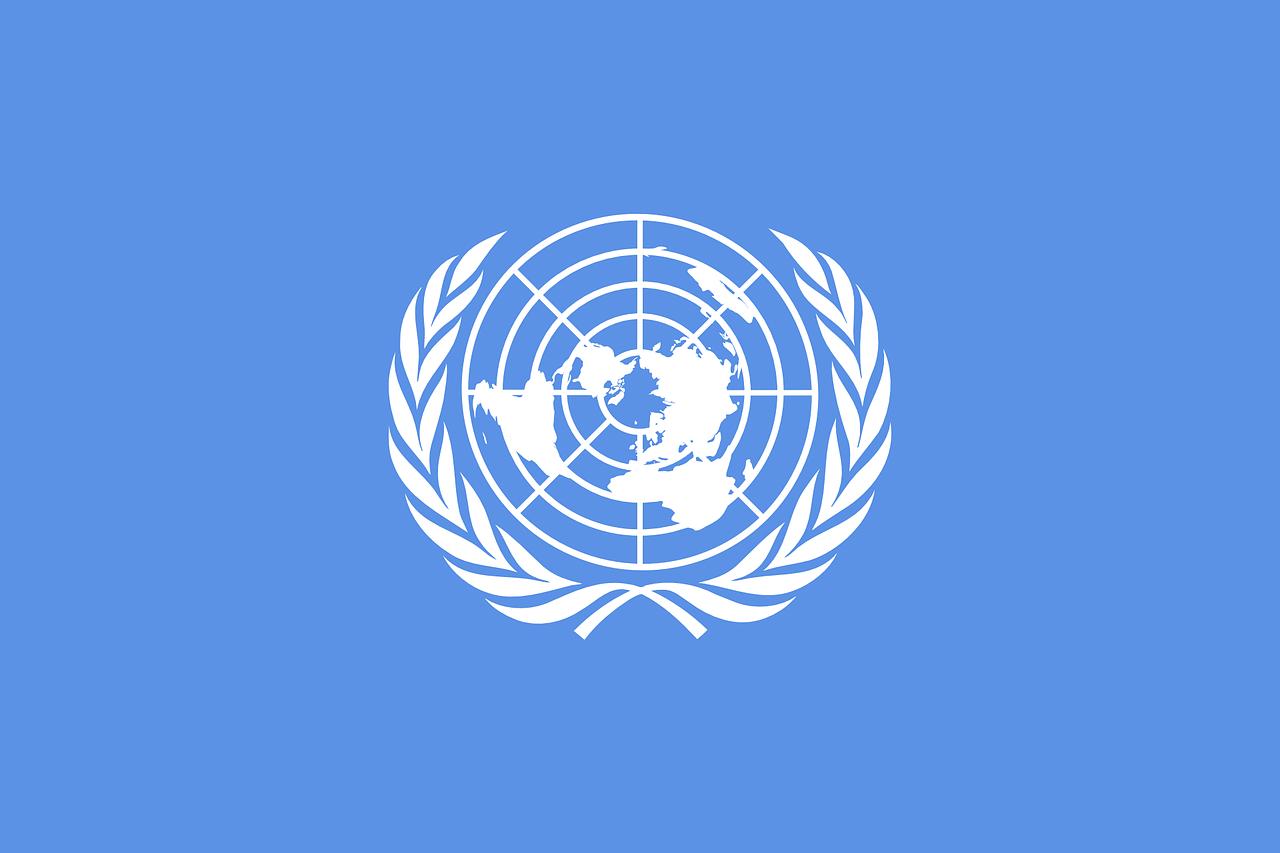 La respuesta mundial por parte de ONU