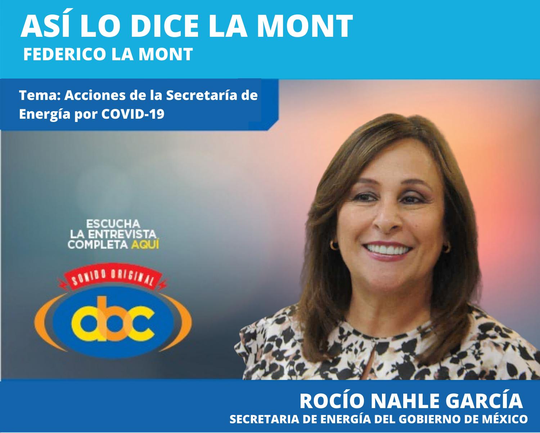 Garantizaremos a todos los mexicanos los servicios básicos en esta cuarentena: Rocío Nahle