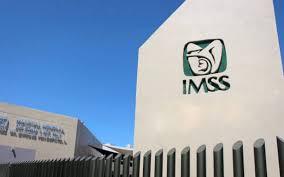¡Consulta en línea si estás vigente en el IMSS!