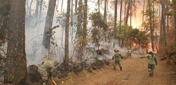 Sedena  despliega más de 400 efectivos para  combatir  incendios forestales en el país